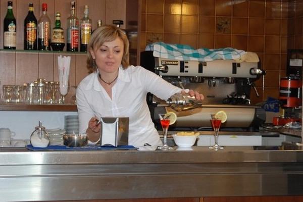 Hotel Napoleon - bar